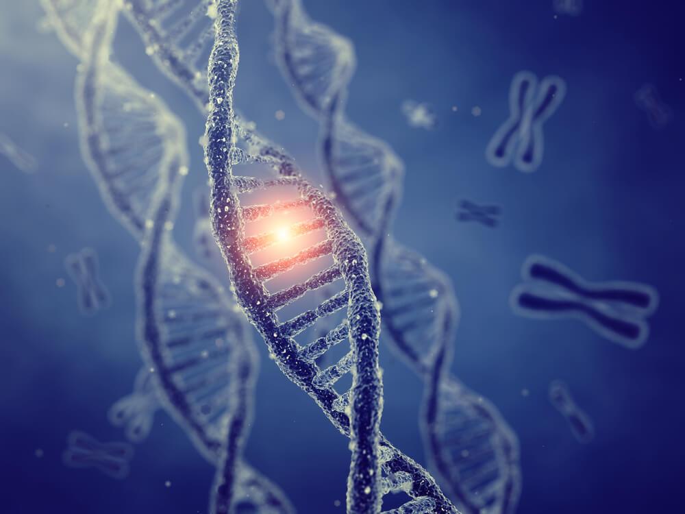 DNA遺伝子のイメージ画像